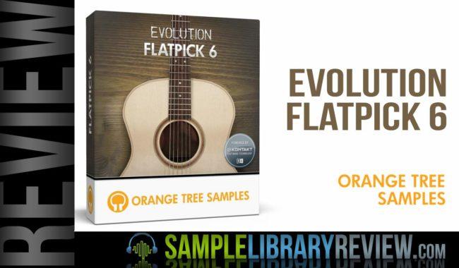 rviewevolutionflatpick6