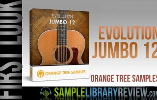 12 string guitar Archives - Sample Library Review