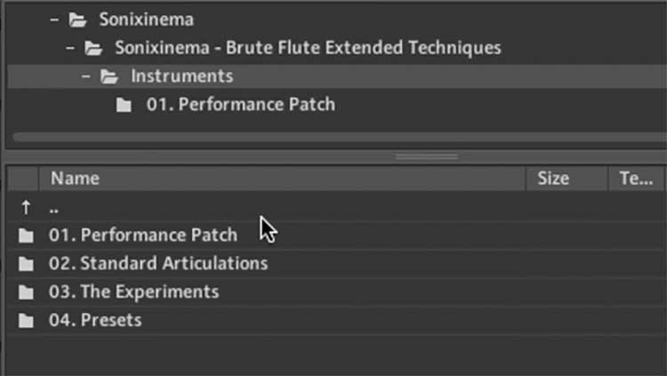 First Look: Brute Flute - Extended Techniques by Sonixinema